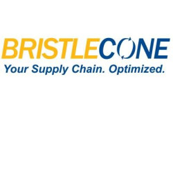 Average BRISTLECONE India Ltd Salary in India | PayScale